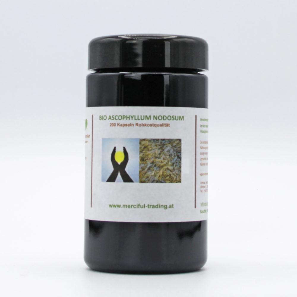 Merciful Trading | Ascophyllum nodosum Braunalge BIO 1