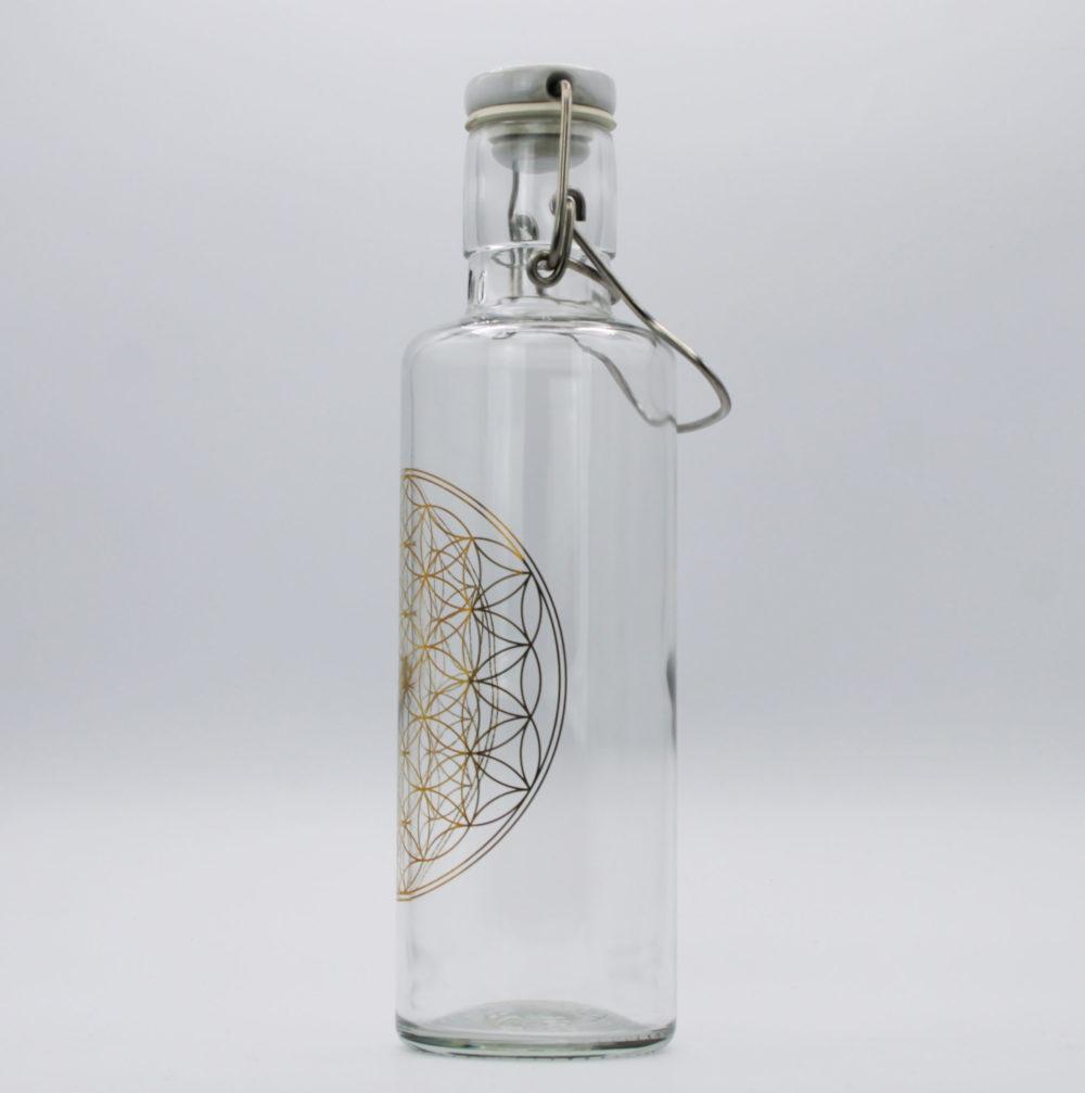 soulbottles   Trinkflasche aus Glas 5